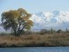 Kyrgyz Ala Too