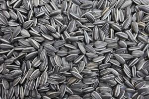 Semechki - Sunflower seeds